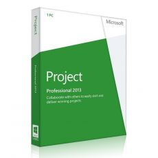 Project Professional 2013, image 1
